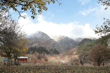 flowering meadows and village landscapes.savsat/artvin/turkey