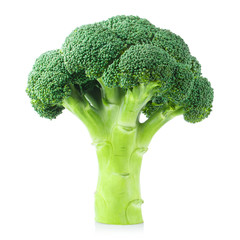 Delicious fresh broccoli, isolated on white background