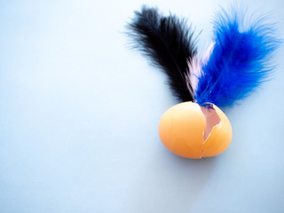 A broken egg with a countdown inside it and feather on a pastel blue background. Concept of freedom