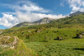 Green alpine pastures