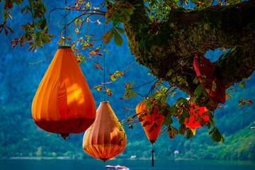 Orange lanterns hanging on the big trees branch