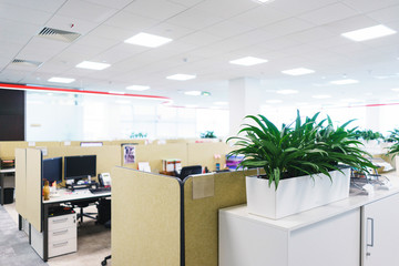 Details of the modern office. Interior and empty working public space. Green plants, furniture parts for employees.