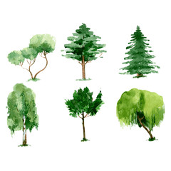 Set of green watercolor trees. hand drawn illustration isolated on white background. Vector