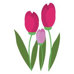 Beautiful flowers cartoon isolated