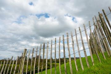 green grass meadow fence in Ireland