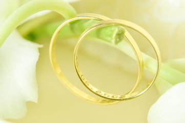 two golden wedding rings. selective focus
