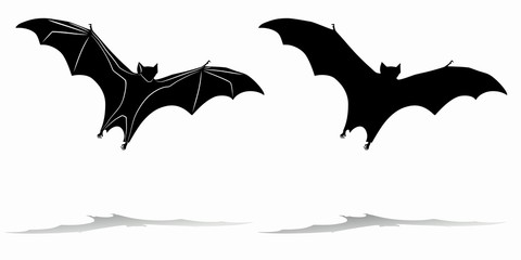 silhouette of a bat, vector draw