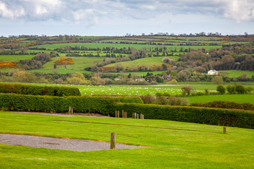 Ireland green meadow scenery