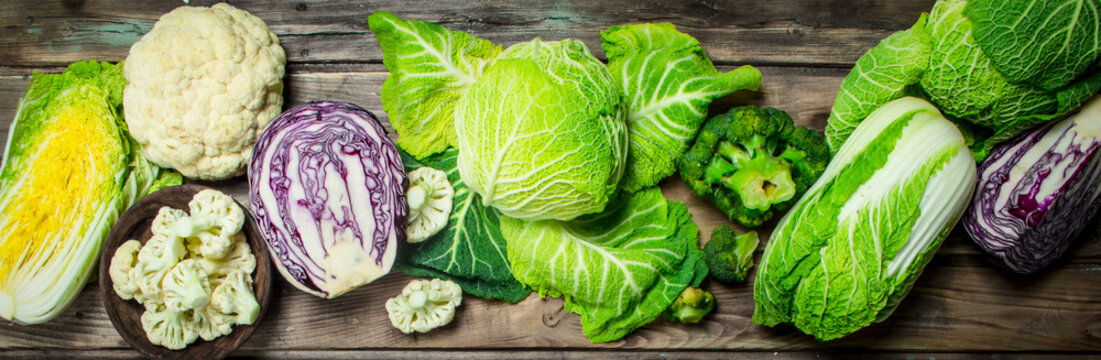 Lot of fresh juicy cabbage.