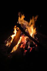 Bonfire in the night, wood burning, orange flames against black background