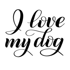 I love my dog. Script lettering. Isolated black print. Handwritten vector illustration. Calligraphic style.