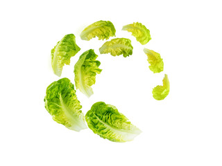 Spiral flying heap of green baby cos lettuce salad leaves Wall mural