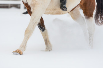 horse and girl riding bareback in snow during winter. Legs and hooves showing