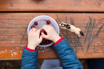 Kid playing with toys and eating grapes on wodden table. Kind mit Spielzeug isst Weintrauben.