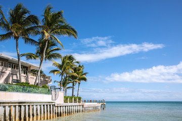 Building with palm trees by the ocean under a blue sky. Ocean view.