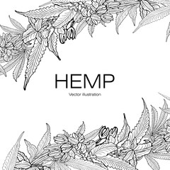 Template hemp 2 BW
