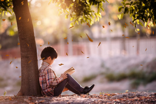 Little boy reading a book under big tree