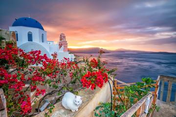 Obraz Sunset on the famous Oia city, Greece, Europe - fototapety do salonu