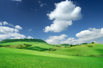 Wall Mural - Landscape, view of green rolling fields