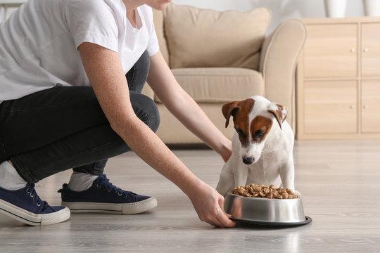 Woman feeding her cute dog at home