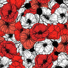 Poppy flower seamless pattern. Red and white papavers composition. Anemones background. Covers, textile and greeting cards floral design. Hand drawn poppy flowers illustrations. Color vector