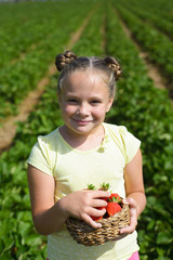 Smiling little girl with picked strawberries in the garden