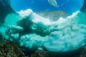 Wall Mural - Drift Ice, Underwater View