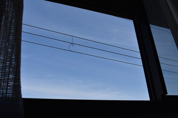 空と電線(Sky&Electrical wire)