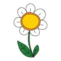quirky hand drawn cartoon daisy