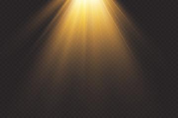 Tuinposter Licht, schaduw Vector transparent sunlight.Vector scene illuminated by spotlight . Light effect on transparent background