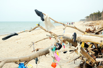 plastic, shoes, webs out of the sea all hanging around in driftwood