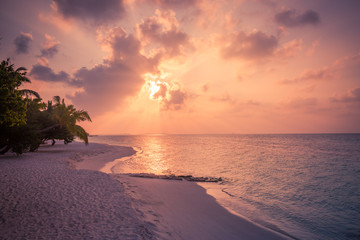 Tropical beach sunset. Exotic landscape with palm trees and calm sea view and sun rays. Beach...