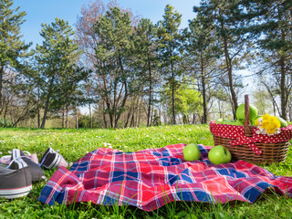 a picnic background with basket and blanket outdoors