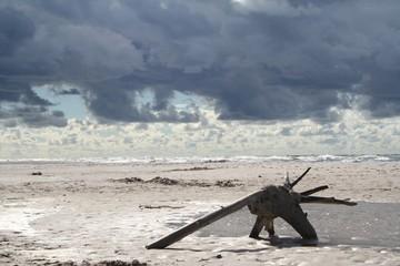 Morze Plaża Czołpino
