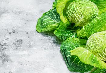 Juicy Savoy cabbage.