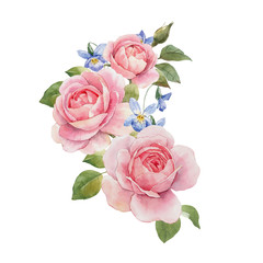Watercolor rose composition