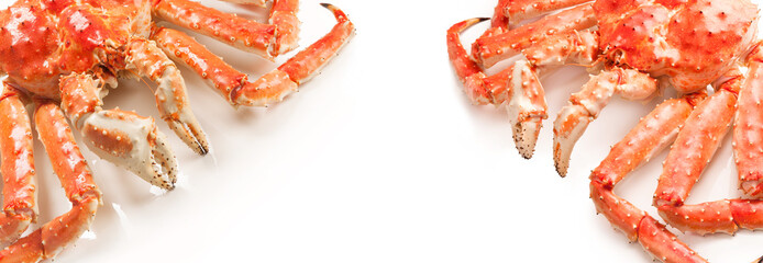 Large red king kamchatsky crabs on white background