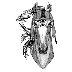 Horse, hoss, knight, steed, courser wearing motorcycle, aero helmet. Biker illustration for t-shirt, posters, prints.