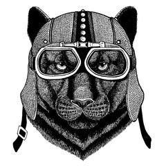 Panther, Puma, Cougar, Wild cat wearing motorcycle, aero helmet. Biker illustration for t-shirt, posters, prints.
