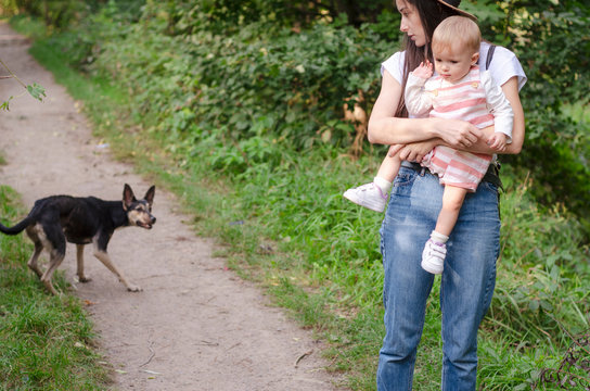 Mom keeps the child tightly pressed against her, saving from the attack of a wild dog. The concept of aggressive street dogs that attack people