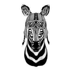 Zebra horse Wild animal wearing motorcycle, aero helmet. Biker illustration for t-shirt, posters, prints.