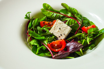 Healthy salad, leaves salad mix in a white plate and cheese (green, juicy snack). food background - Image
