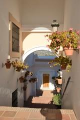 Flowers pots in Mediterranean village, Benahavis Andalusia, Spain