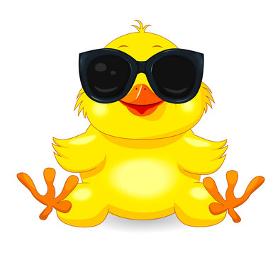 Little yellow chick in black glasses. Little yellow chicken with sunglasses. Chick on a white background. Cartoon chick