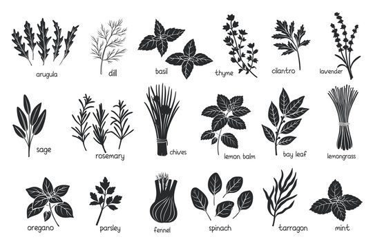 Black herbs spices silhouettes