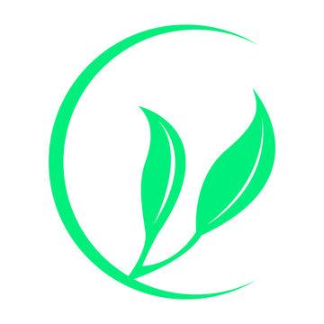 Isoalted leaves icon. Spa logo. Vector illustration design