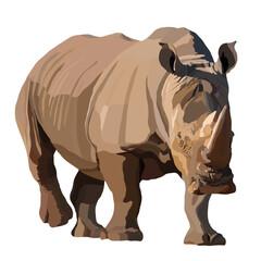 Big African rhino wlking isolated vector illustration