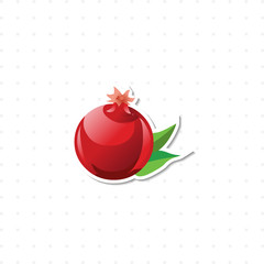pomegranate isolated illustration