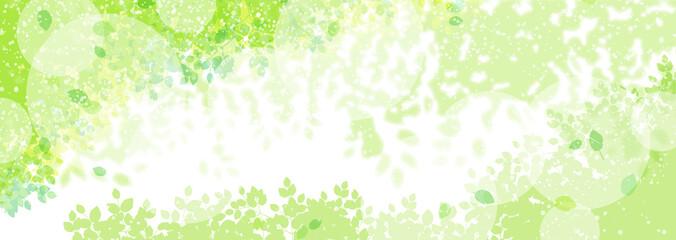 緑の植物と木漏れ日 Wall mural
