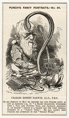 Charles Darwin Studying a Worm